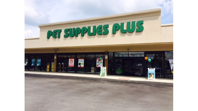 New pet store offering self service dog washes solutioingenieria Gallery